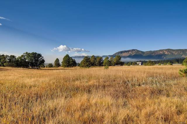 615 Pioneer Camp View, Palmer Lake, CO 80133 (MLS #6805021) :: Colorado Real Estate : The Space Agency
