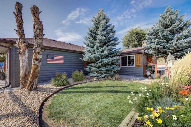 8977 Spruce Mountain Road, Larkspur, CO 80118 (#6808595) :: The DeGrood Team