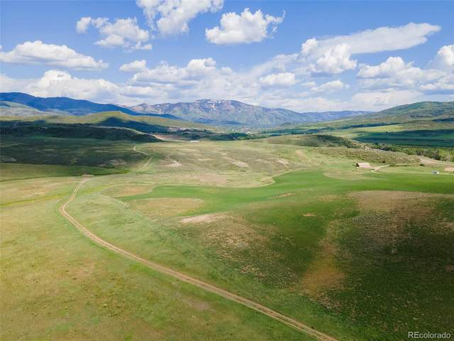 0000 County Road 42, Steamboat Springs, CO 80487 (#6811278) :: The DeGrood Team