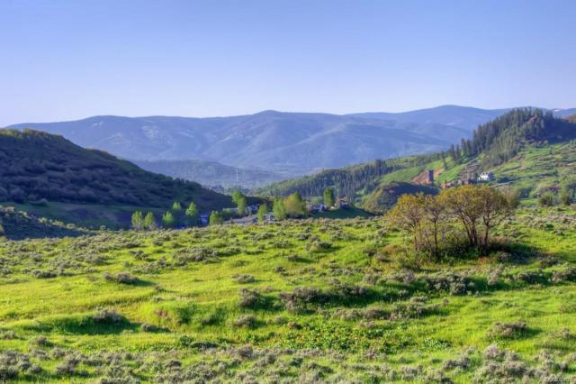 Sunlight Drive, Steamboat Springs, CO 80487 (MLS #6812149) :: 8z Real Estate