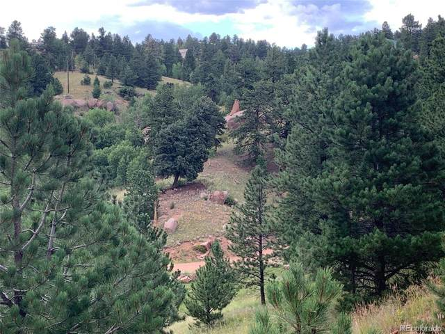 57 Wilson Court, Cripple Creek, CO 80813 (MLS #6817136) :: Bliss Realty Group