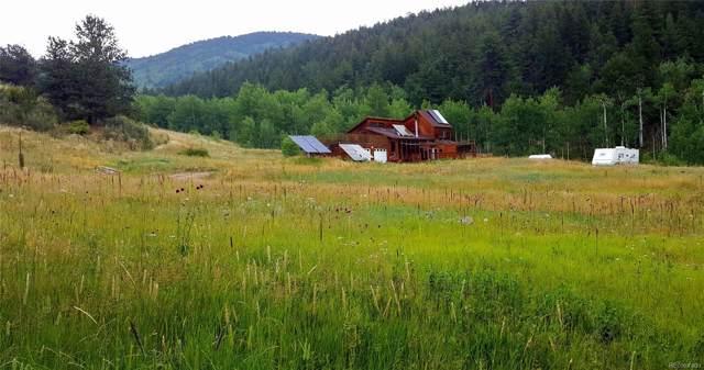 1481 York Gulch Road, Idaho Springs, CO 80452 (MLS #6829397) :: 8z Real Estate