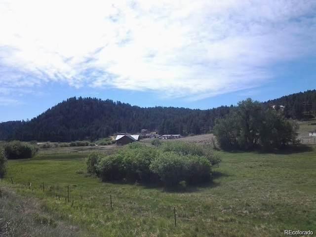 191 Jess-Mar Drive, Shawnee, CO 80475 (#6854898) :: The DeGrood Team