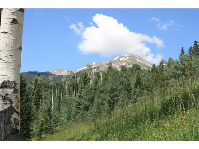 370 Two Cabins Drive, Silverthorne, CO 80498 (MLS #6880226) :: 8z Real Estate