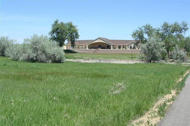 2520 Little Thompson Drive, Berthoud, CO 80513 (#6882752) :: Bring Home Denver with Keller Williams Downtown Realty LLC