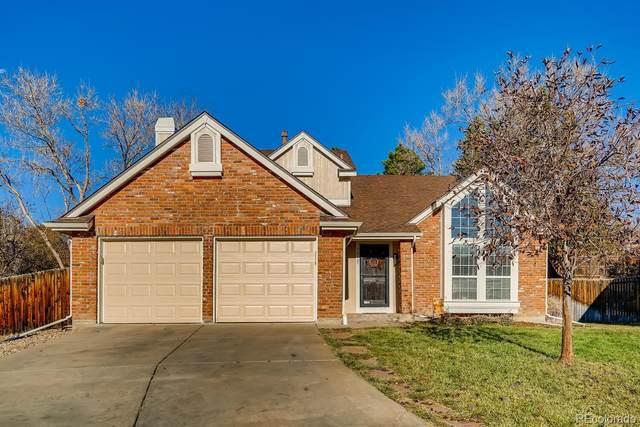 7817 Cathedral Peak, Littleton, CO 80127 (MLS #6901141) :: 8z Real Estate