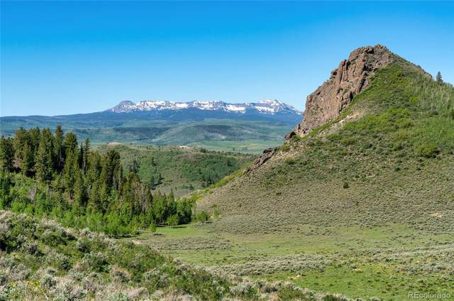 28140 County Road 6D, Yampa, CO 80483 (#6904074) :: The DeGrood Team
