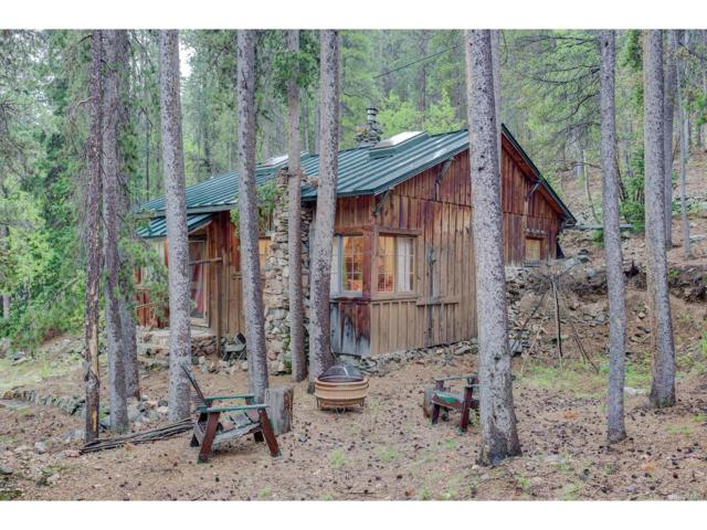 7731 County Road 43, Bailey, CO 80421 (MLS #6911710) :: 8z Real Estate