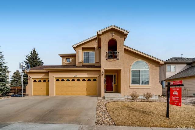 6079 Vacquero Drive, Castle Pines, CO 80108 (#6924540) :: The Gilbert Group