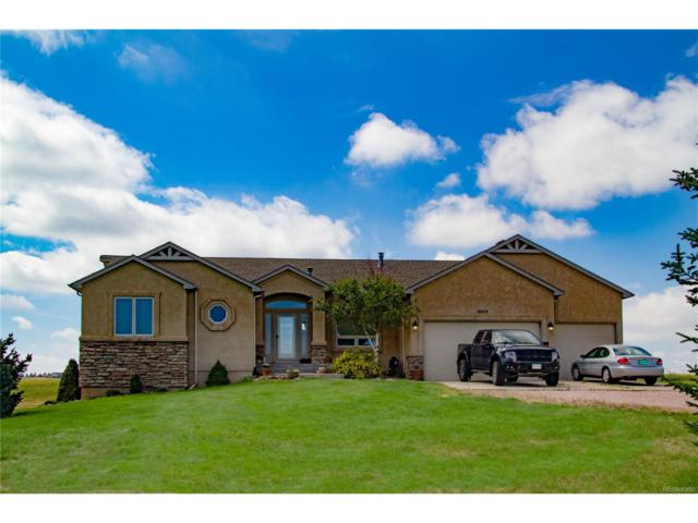 19515 Yellow Wing Court, Colorado Springs, CO 80908 (MLS #7007652) :: 8z Real Estate