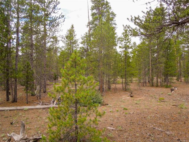 360 Spruce Drive, Leadville, CO 80461 (#7046592) :: Compass Colorado Realty