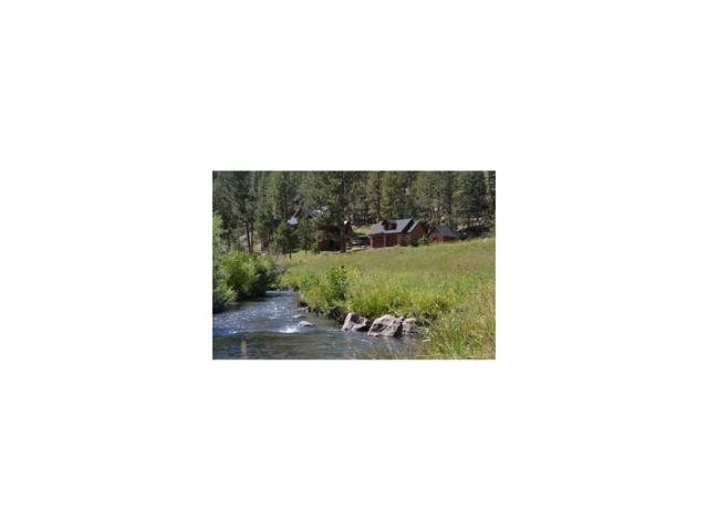 89 Ranch View Road, Florissant, CO 80816 (MLS #7048365) :: 8z Real Estate