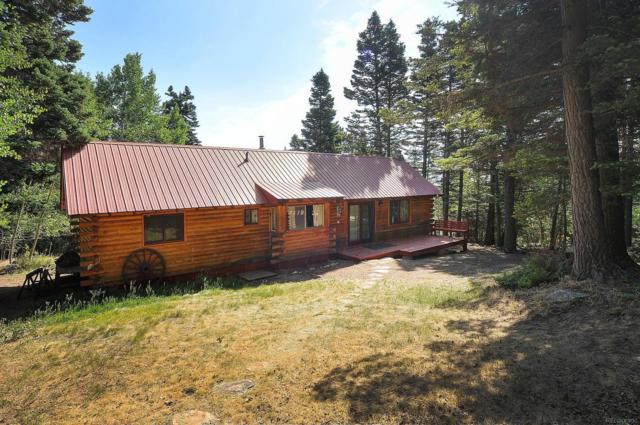 4745 Forest Lane, Howard, CO 81233 (#7065212) :: Sellstate Realty Pros