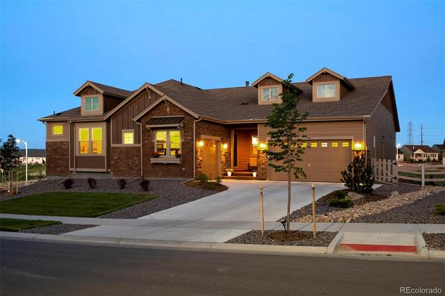 7970 Gore Creek Lane, Littleton, CO 80125 (#7066127) :: The Healey Group