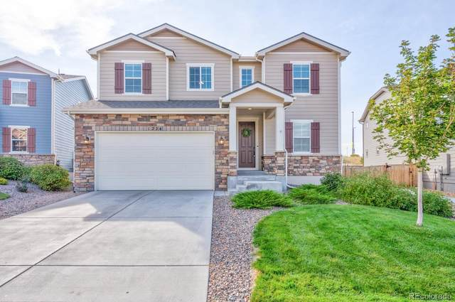 1224 Mcmurdo Circle, Castle Rock, CO 80108 (#7069952) :: Kimberly Austin Properties