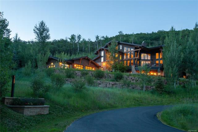 31665 Aspen Ridge Road, Steamboat Springs, CO 80487 (#7073297) :: 5281 Exclusive Homes Realty