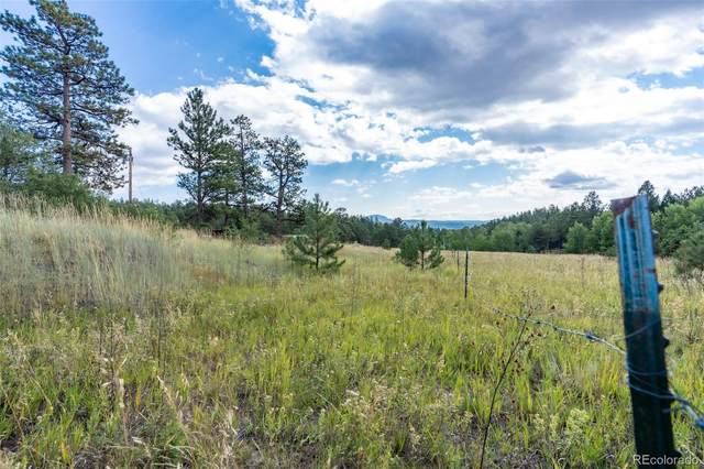 22244 County Road 126, Pine, CO 80470 (#7094410) :: The Colorado Foothills Team | Berkshire Hathaway Elevated Living Real Estate