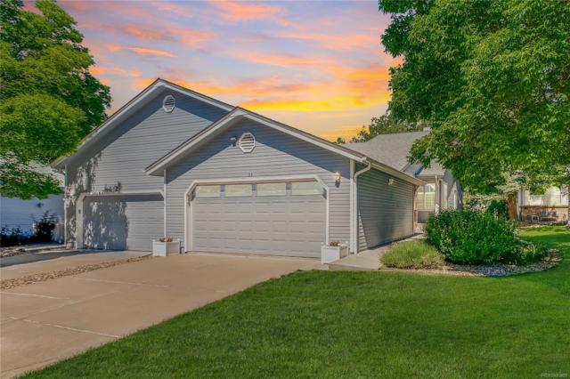 39 Shetland Court, Highlands Ranch, CO 80130 (#7098242) :: The HomeSmiths Team - Keller Williams