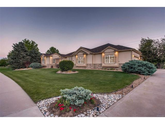 5735 Poppy Way, Golden, CO 80403 (MLS #7123981) :: 8z Real Estate