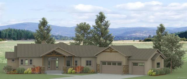 17946 Prairie Coach View, Calhan, CO 80808 (#7135071) :: Mile High Luxury Real Estate
