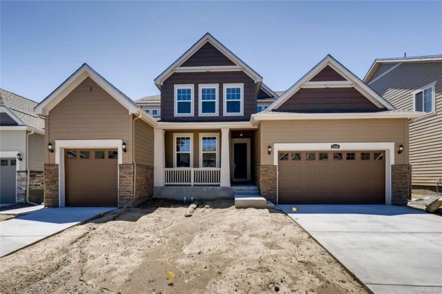 2206 Tyrrhenian Circle, Longmont, CO 80504 (#7169354) :: The DeGrood Team