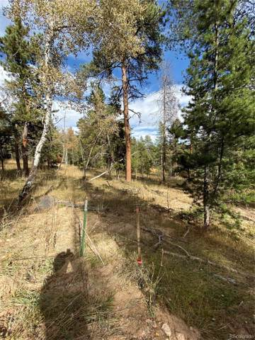 Lot 10M TBD Wallace Avenue, Conifer, CO 80433 (#7181257) :: The Gilbert Group