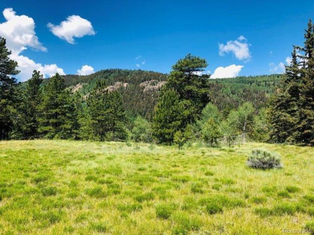 2 N Ridge Court, Antonito, CO 81120 (#7184431) :: Harling Real Estate