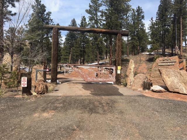 28442 Eagles Gate Road, Pine, CO 80470 (#7190608) :: James Crocker Team