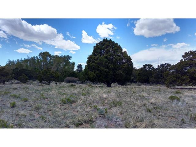 15 Hampton Run, Mosca, CO 81146 (MLS #7215363) :: 8z Real Estate