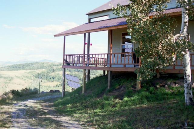 733 Jackrabbit Road, Slater, CO 81625 (MLS #7217232) :: Kittle Real Estate