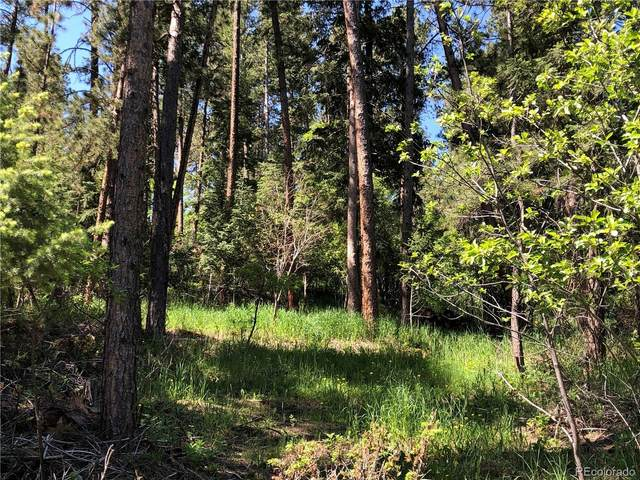 0 Fowler Branch, Palmer Lake, CO 80133 (#7227289) :: The Harling Team @ HomeSmart