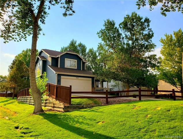 10647 Apishamore Court, Parker, CO 80134 (#7228763) :: The Brokerage Group
