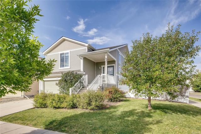 5559 Killarney Street, Denver, CO 80249 (#7233446) :: The Griffith Home Team
