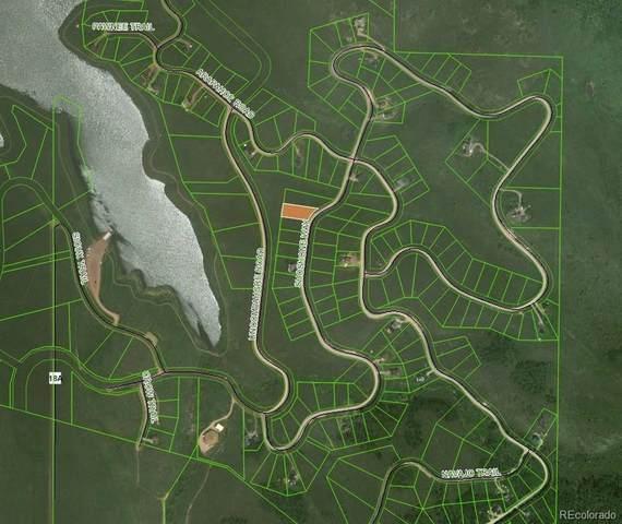 31485 Shoshone Way, Oak Creek, CO 80467 (#7243377) :: The Healey Group