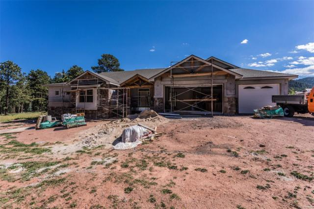 1225 Cottontail Trail, Woodland Park, CO 80863 (#7254933) :: Structure CO Group