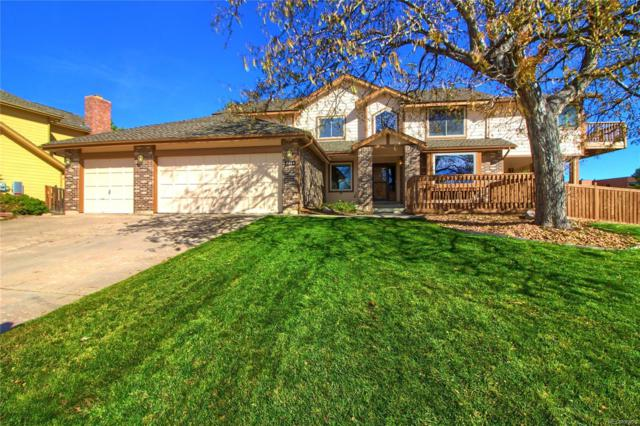 8664 Maplewood Drive, Highlands Ranch, CO 80126 (#7278699) :: The HomeSmiths Team - Keller Williams