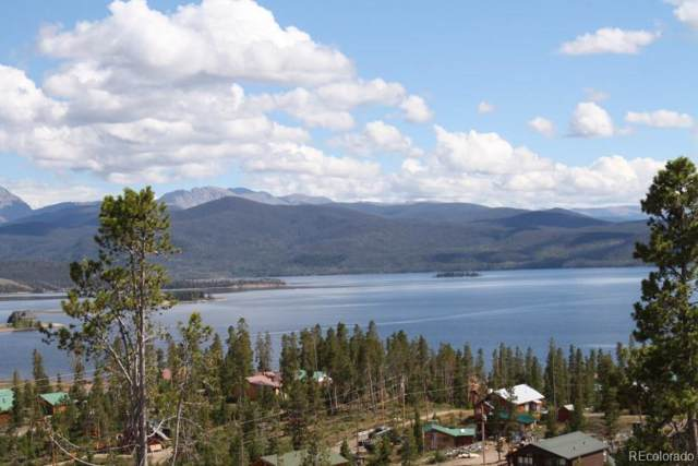 417 County Road 4033, Grand Lake, CO 80447 (#7282292) :: The Brokerage Group