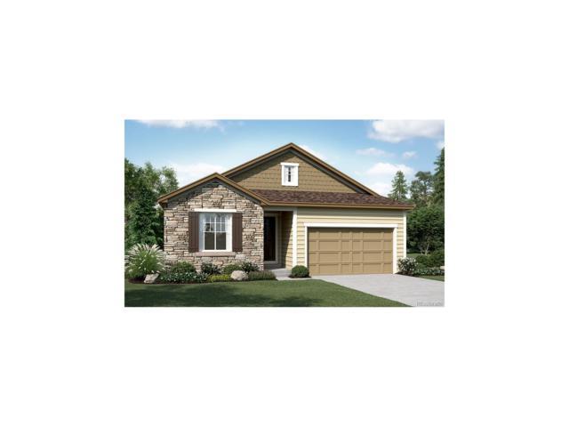 11211 Endeavor Drive, Parker, CO 80134 (MLS #7284751) :: 8z Real Estate