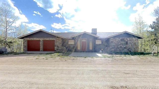 99 Quartz Circle, Bailey, CO 80421 (#7294998) :: The DeGrood Team