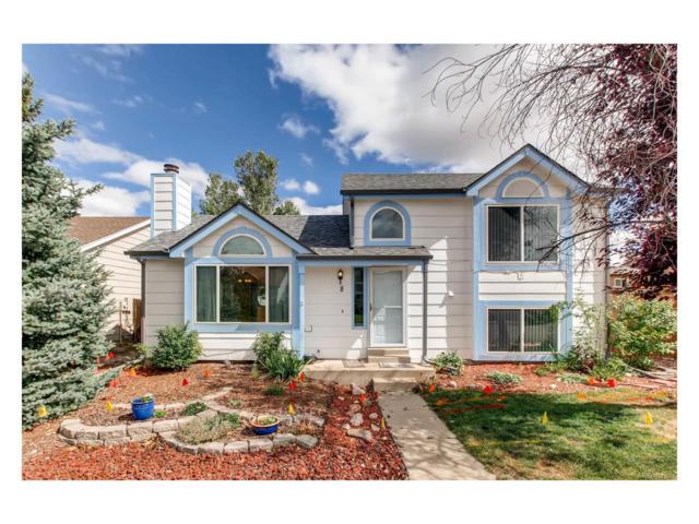 8 Quicksilver Avenue, Castle Rock, CO 80104 (#7315947) :: The Peak Properties Group
