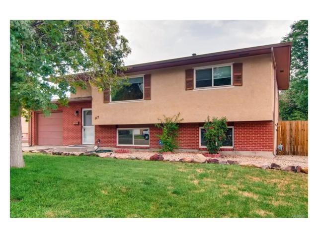 117 La Rochelle Drive, Pueblo, CO 81005 (MLS #7336197) :: 8z Real Estate