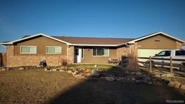 3631 N Allen Street, Castle Rock, CO 80108 (#7347392) :: HomeSmart