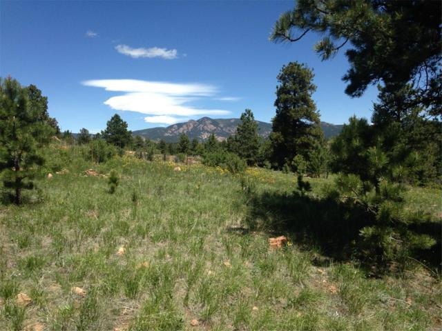 34402 Natural Spring Road, Pine, CO 80470 (MLS #7347659) :: 8z Real Estate