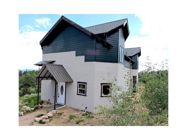 6745 Remington Road, Como, CO 80432 (MLS #7355228) :: 8z Real Estate