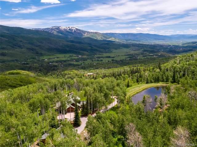 42185 Fern Hill Road, Steamboat Springs, CO 80487 (MLS #7408877) :: 8z Real Estate
