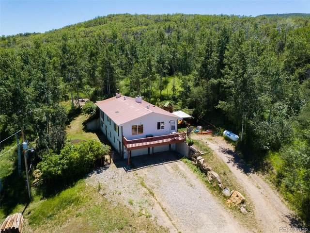 12120 Yoast Trail, Hayden, CO 81639 (MLS #7428734) :: 8z Real Estate