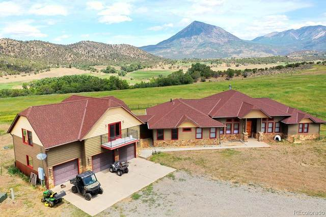 41333 D Road, Crawford, CO 81415 (MLS #7444106) :: 8z Real Estate