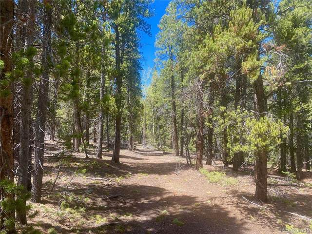 001 Virginia Canyon Road, Central City, CO 80427 (#7450628) :: The DeGrood Team