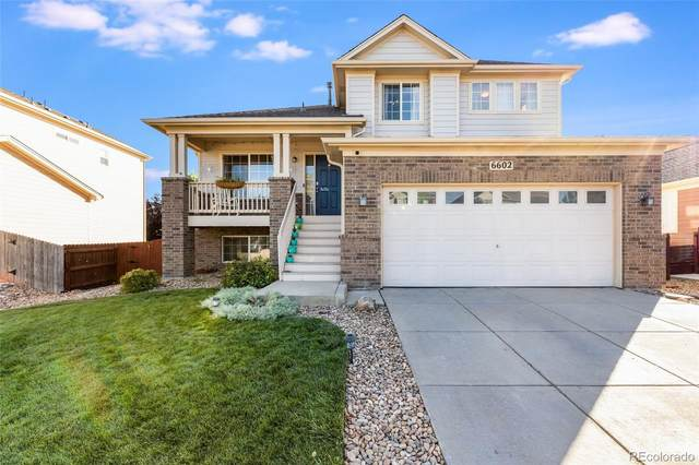6602 E 115th Avenue, Thornton, CO 80233 (MLS #7456226) :: Bliss Realty Group