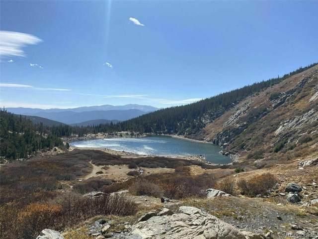 Hillside Road, Idaho Springs, CO 80436 (#7477235) :: The DeGrood Team